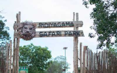 Ridiyagama Safari Park