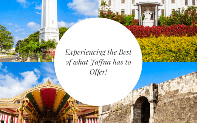 Jaffna: Your Travel Guide To Experiencing The Best Of What Jaffna Has to Offer